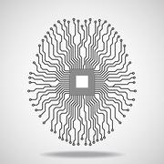 Brain. Cpu. Circuit board Stock Illustration