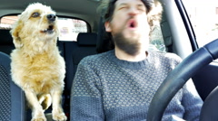 Man playing with dog in car both barking Stock Footage