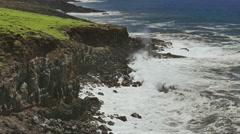 Rocky Coast Sea Idyllic Beach Island Footage Nature Beautiful Hawaii Water Stock Footage