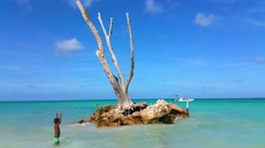 Little boy playing in front of a little island, at bavaro beach, punta cana Stock Footage