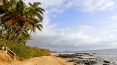 Beautiful Beach Palm Tree Sky Clouds Nature Idyllic Footage Sea Island Hawaii Stock Footage
