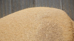 Rice Husk from milling machine - stock footage