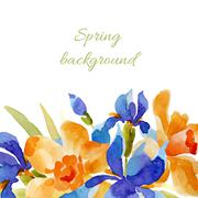 Spring background. Watercolor lowers - stock illustration