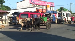 Man on Zebu cart transport barrel through city Stock Footage