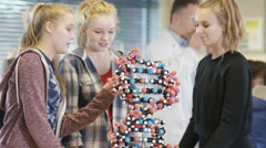 4K Group of students looking at model in school science class - stock footage