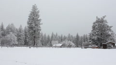 Snow covered field, building Stock Footage