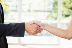 Real-estate agent shaking hands with client - stock photo