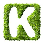 Letter K made of green leaves - stock photo