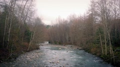 Wide River In Afternoon Woods Stock Footage