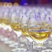 Wineglasses with white wine in row on the bar, ready for consuming on event. - stock photo