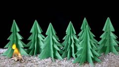 Fire in paper forest Stock Footage