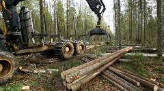 View on mechanical arm of logger loading logs - stock footage