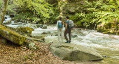 Hikers Forest River Exploring Couple Travel Trekking Nature Footage Enjoying Stock Footage