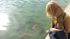 Girl is Feeding the Carp at the Pond Stock Footage