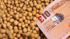 Soybean crop harvesting in Great Britain Stock Footage