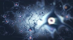 Neurons in brain with nerve cell and core - stock footage