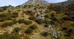 4K Aerial, Flight along mountains and olive plantations, Andalusia, Spain Stock Footage