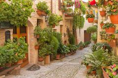 Flower street in the town of Spello (Umbria, Italy) Stock Photos