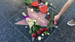 David Bowie Hollywood Star Memorial Stock Footage
