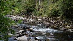 Smoky Mountain Stream Stock Footage