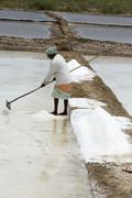 Agriculturist is harvesting salt farm, Pondicherry arera Stock Photos