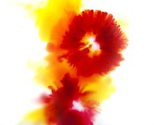 Water color, Colorful abstract background of flower concept Stock Photos