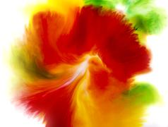 Water color, Colorful abstract background of flower concept - stock photo