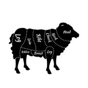 Cuts of Lamb or Mutton Diagram - stock illustration