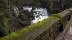 Whatcom Falls, Bellingham USA.  Stock Footage