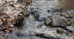 Closeup of gentle forest stream flow. Stock Footage