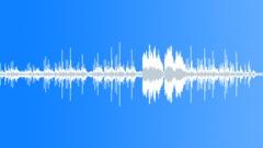 Prado de San Sebastian - stock music