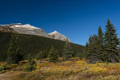 Stock Photo of Trail on glacial lake Bow Lake Banff National Park Canadian Rockies Alberta