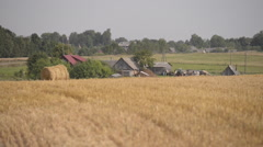 Harvested grass and old wooden country houses Stock Footage