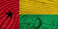 Stock Illustration of Guinea bissau flag
