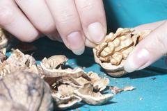 Woman stabs walnuts with a hammer Stock Photos