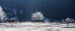 Hoarfrost covered rural landscape - stock photo