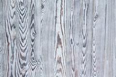 Chalk painted White pine wood texture Stock Photos