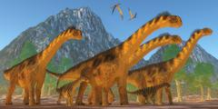 Camarasaurus Dinosaurs Stock Illustration