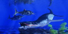 Liopleurodon Catches an Ichthyosaur - stock illustration