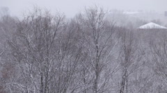 Snow is falling on the trees and roofs. Stock Footage