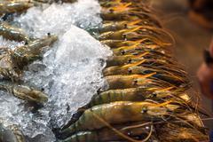 Shrimps at fishmarket Stock Photos