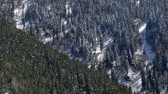 Mountain Forrest Layers - stock footage
