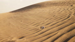DESERT, DUNE, WIND Stock Footage
