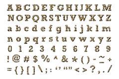 Hyena alphabet - stock illustration