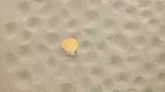 Yellow seashell and her prints blown away by wind Stock Footage