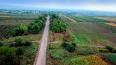 Aerial view of suburban road between fields Stock Footage