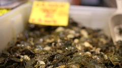 Alive crabs in a box at San Giovanni fish market, Cagliari, Sardinia. Stock Footage