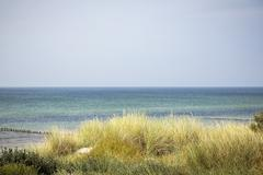 Stock Photo of ocean landscape with dune and marram grass