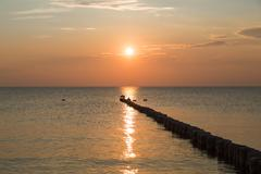 Stock Photo of Sunset at Hiddensee with some seagulls