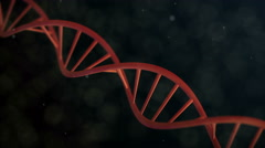 Rotation in Slow Motion of realistic DNA Double Helix 4k over Dark Background, Stock Footage